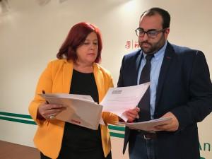 FOTO PSOE AVE Loja 1