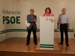 FOTO PSOE Balance Gobierno Rajoy 20170803