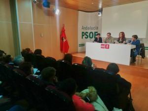 FOTO PSOE. Consejo Provincial Igualdad 20180313